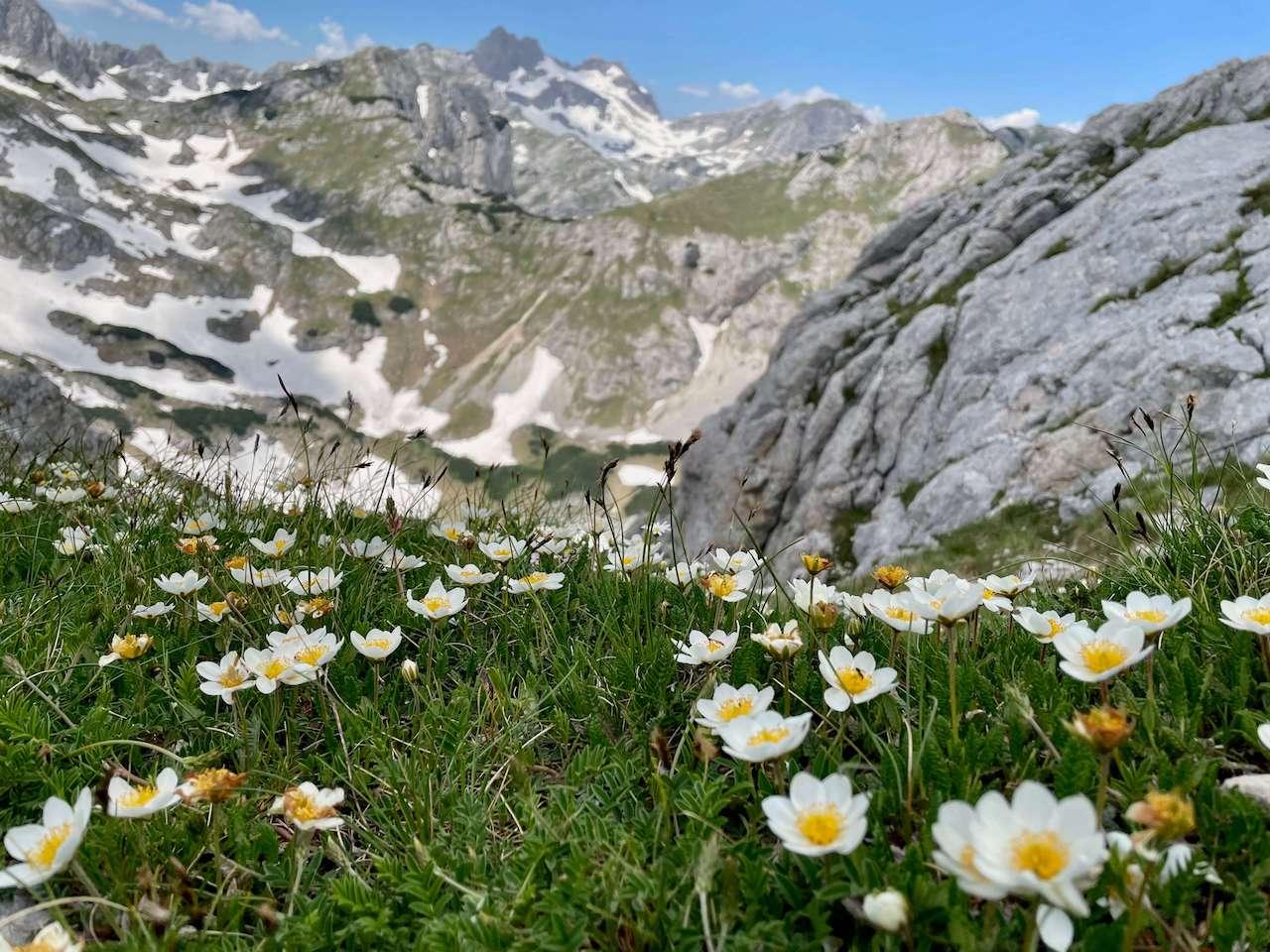 Montenegro, Durmitor National Park - Savin Kuk